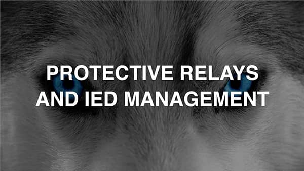Protective Relays And IED Management