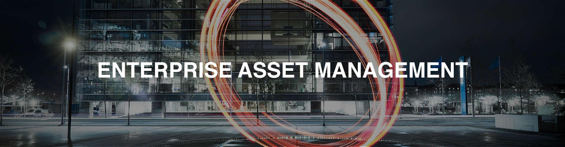 Enteprise Asset Management (APM)